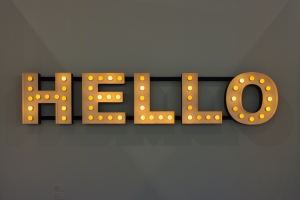 """Mixed Media Installation by Peter Liversidge: Hello, 2013 (58"